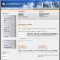 BusinessSense
